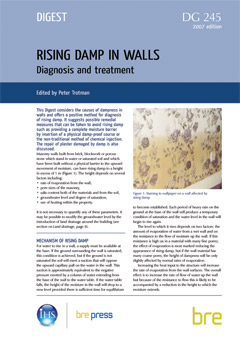 Rising damp in walls - diagnosis and treatment<br>(DG 245)  <B>DOWNLOAD</B>